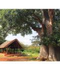 домик в Танзании