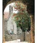 вид на церковь через арку