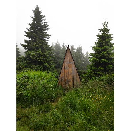 деревянный деревнеский клозет расположился между двух елей