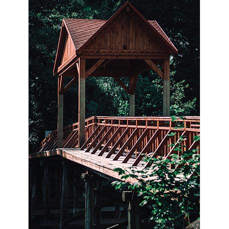 деревянный мост в лесу
