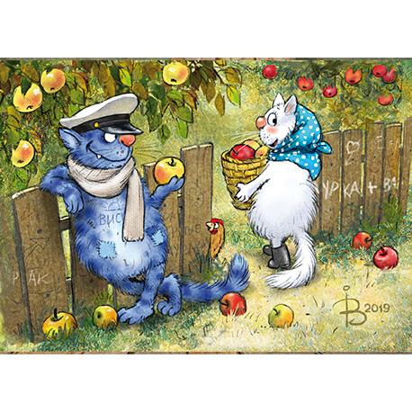 Синие коты с любовью смотрят друг на друга в Украине